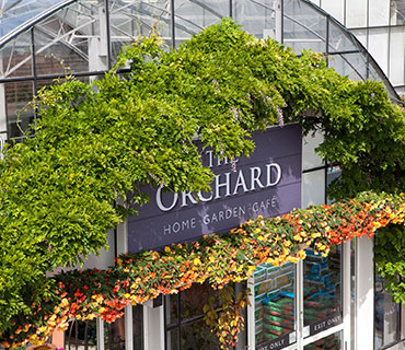 the orchard celbridge